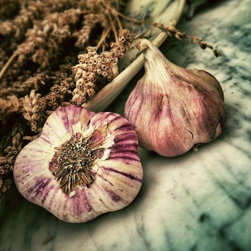 Garlic - Da Suan, Bulbis Allie Sativi